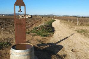 camí del vi